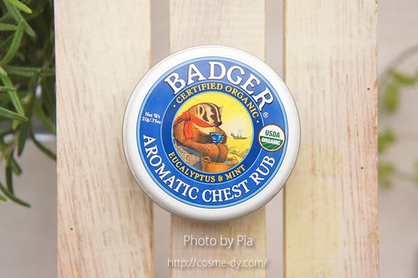 Badger Company, オーガニック アロマティック チェスト ラブ, ユーカリ & ミント