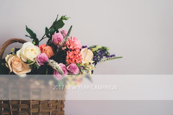 シンシアガーデンの福袋と2017新春キャンペーン
